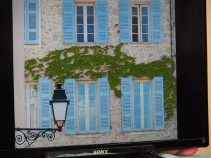 Woad painted shutters